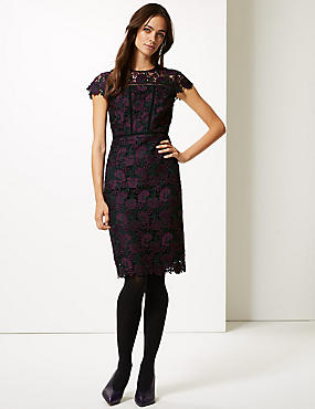 Lace Cap Sleeve Bodycon Midi Dress, PLUM, catlanding