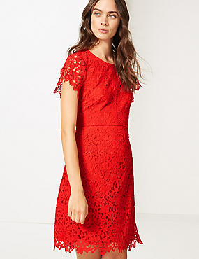 Lace Short Sleeve Skater Dress , CHILLI, catlanding