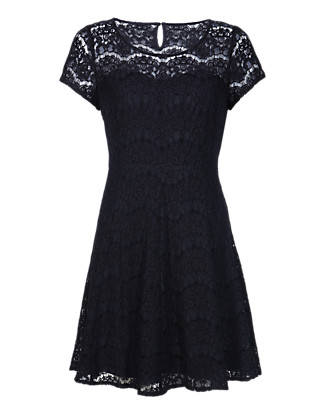 PETITE Eyelash Lace Skater Dress Clothing