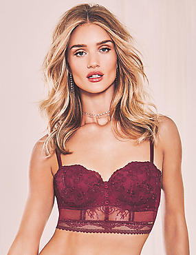 Historical Romance Embroidered Bodice Balcony Bra A-D