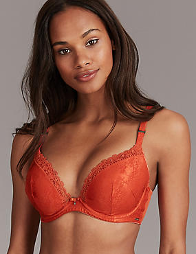 Embroidered Padded Plunge Bra A-E