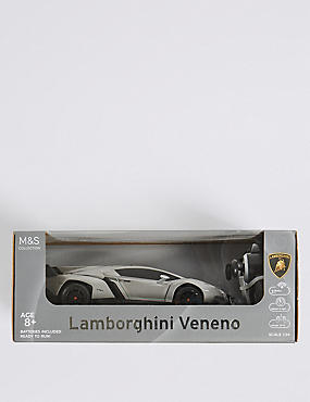 Lamborghini Veneno Super Sports Car, , catlanding
