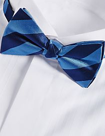 Pure Silk Striped Bow Tie