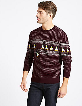Novelty Crew Neck Jumper with Lights