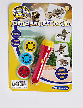 Dinosaur Projector Torch