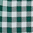 Pure Cotton Checked Shirt (3 Months - 7 Years), LIGHT EMERALD, swatch