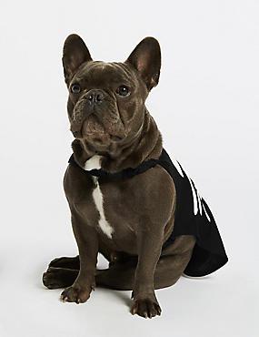 Skeleton Dog Fancy Dress, BLACK MIX, catlanding