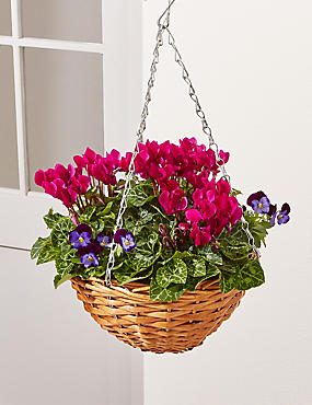Autumn Hanging Basket