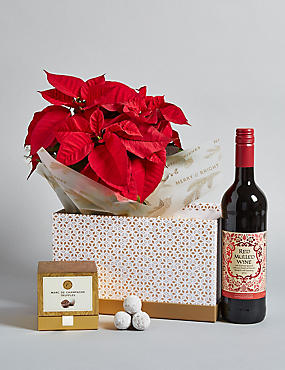 Festive Mulled Wine Poinsettia Hamper