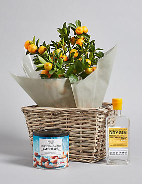 London Dry Gin, Roasted Cashews & Citrus Tree Hamper
