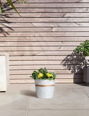 Garden Plants Flowers Outdoor Hanging Potted Plants MS