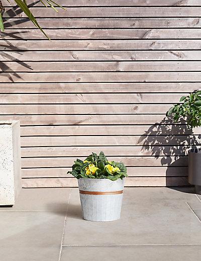 flowering barrel m s. Black Bedroom Furniture Sets. Home Design Ideas