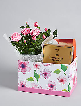 Mother's Day Tea Hamper (Pre-order for free delivery from 6th March)