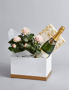 Rose & Champagne Chocolate Hamper
