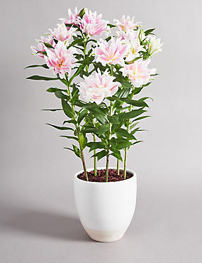 The Collection Double Lily Bouquet