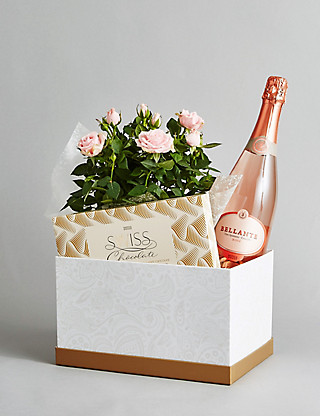 Sparkling Wine, Rose Plant & Swiss Chocolates Hamper Flowers