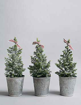 Mini Christmas Tree Trio (Pre Order)