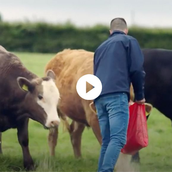 A video of M&S Select Farmer Henry Ryle's farm in Northumberland