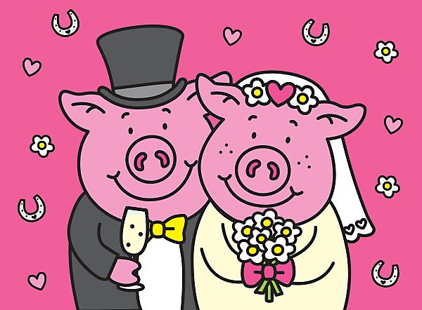 Percy and Penny pig in wedding outfits