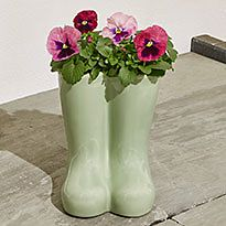 Flowers in a novelty pot