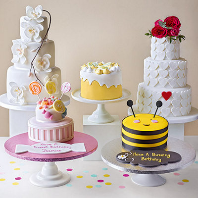 Discover our new cakes