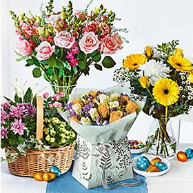Selection of seasonal spring flowers