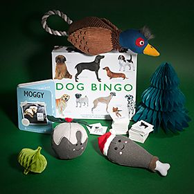 Selection of gifts for pets including 'dog bingo' and squeaky toys
