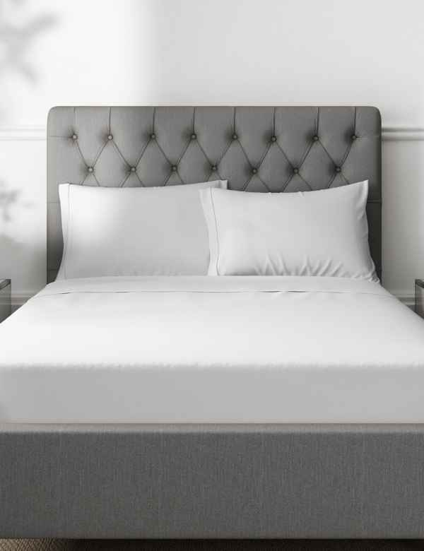 a0c8f7092ff Pure Egyptian Cotton 230 Thread Count Standard Pillowcase with StayNEW™