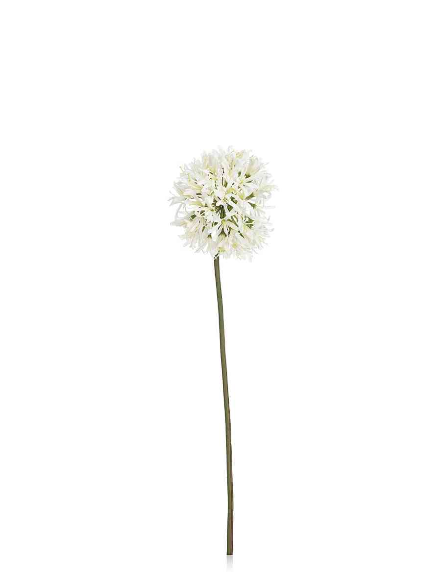 Artificial Allium Ms