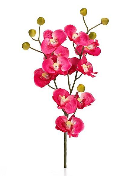 Artificial Mini Orchid