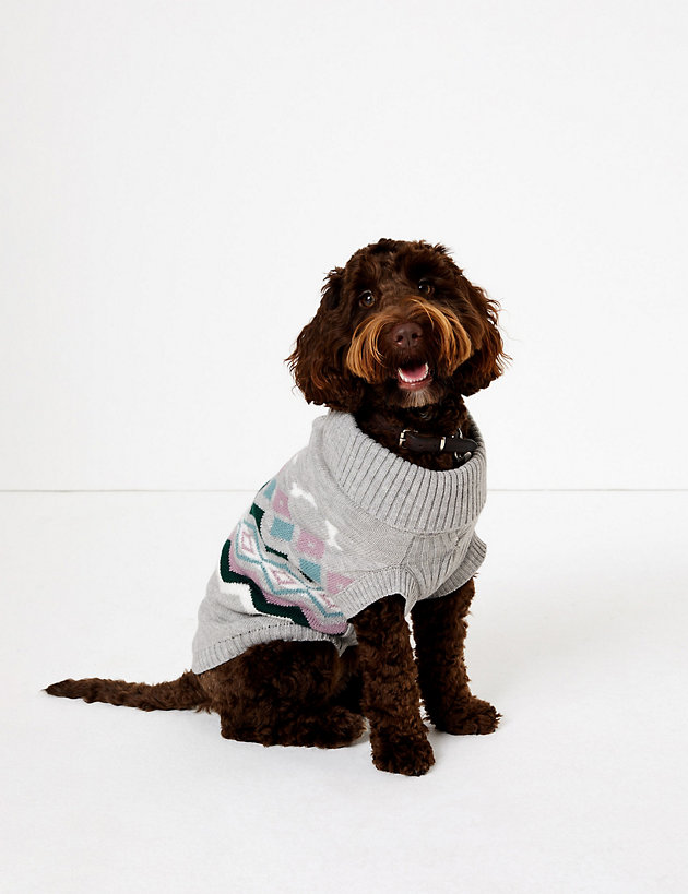 Chevron Stripe Bone Print Dog Jumper