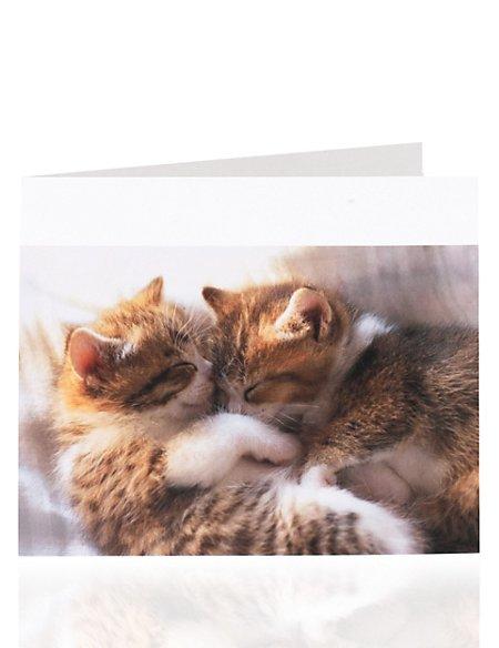 Cats Cuddling Blank Card