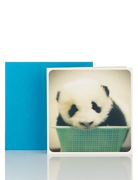Little Laughs Mini Panda Blank Card