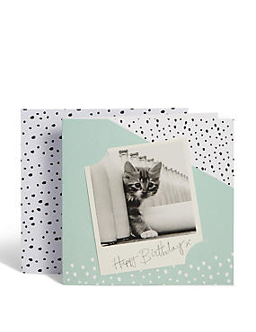 Photographic Kitten Birthday Card