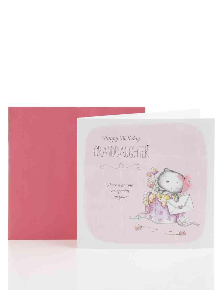 Cute Bear Granddaughter Birthday Card