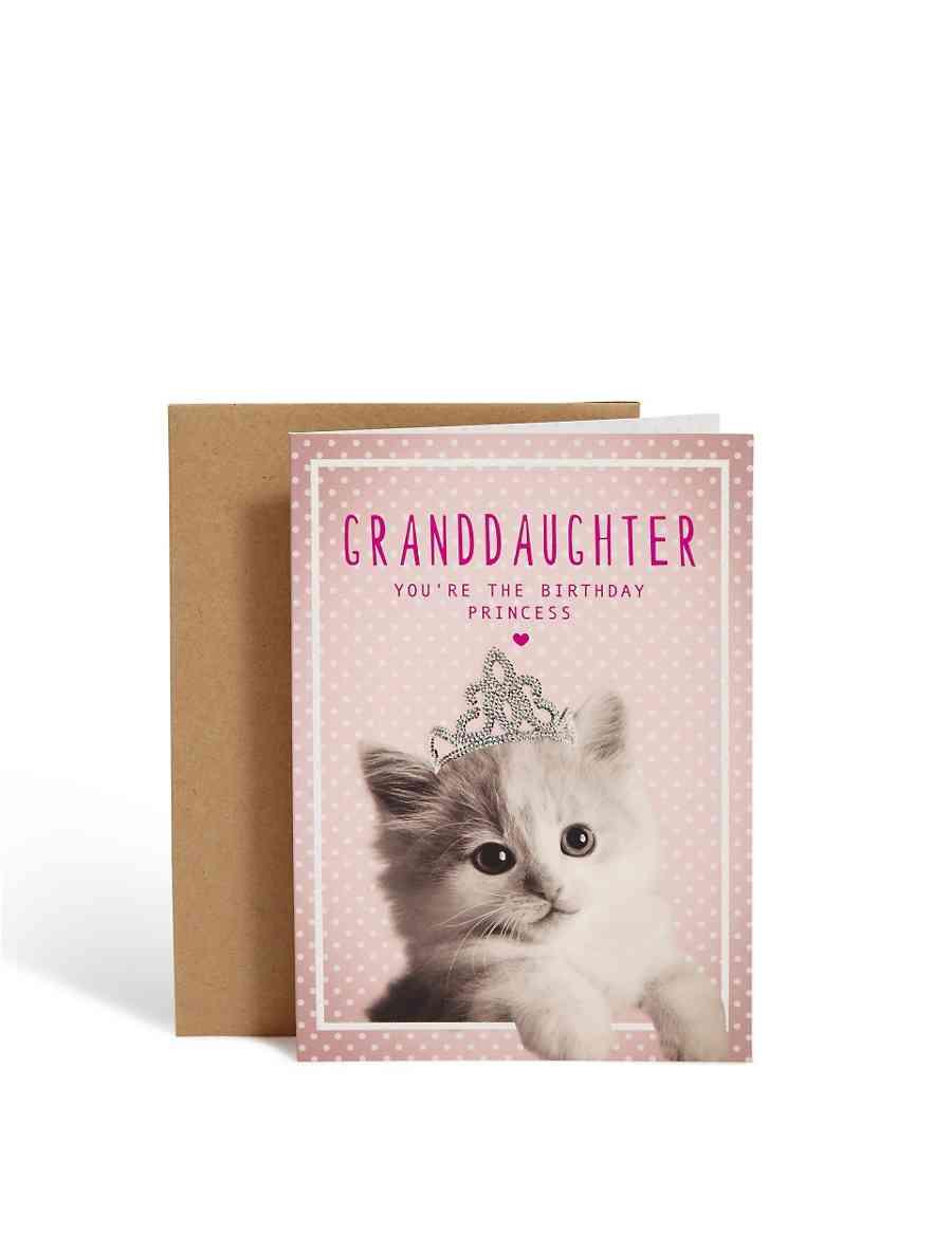 Cute Kitten Granddaughter Birthday Card