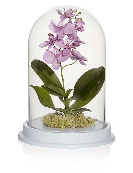 Artificial Orchid Cloche