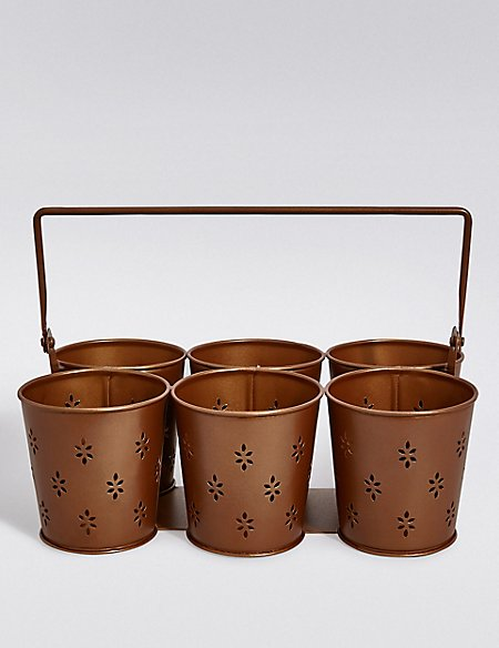 6 Pot Herb Tray