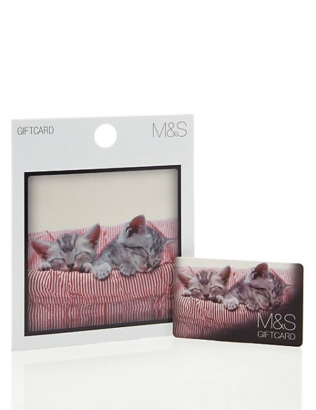 Cute Cats Gift Card