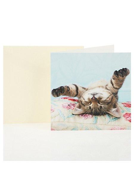 Sleeping Cat Blank Greetings Card