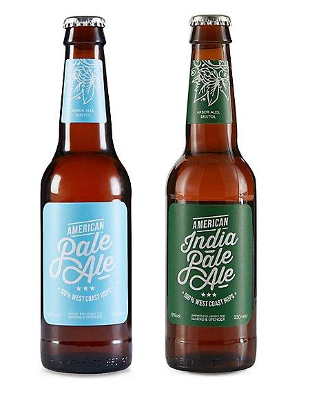 Mixed American Craft Beer Dozen - Case of 12