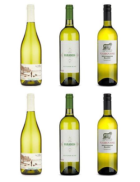 Sauvignon Blanc Favourites - Case of 6