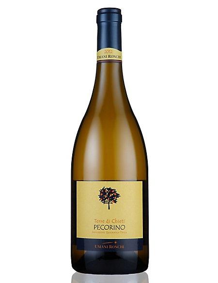 Pecorino - Case of 6