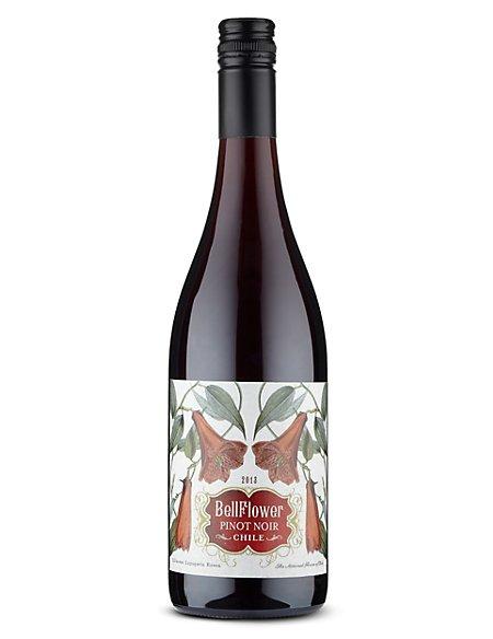 Bellflower Pinot Noir - Case of 6