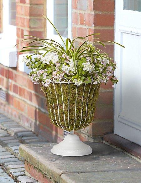 Victoriana Flowering Urn