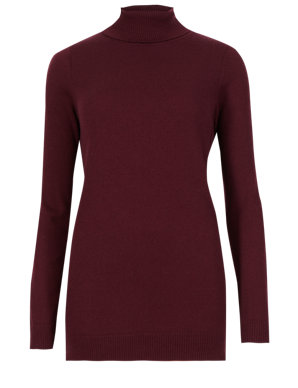 79db25e51e1fe9 Long Sleeve Polo Neck Jumper with Wool | M&S Collection | M&S