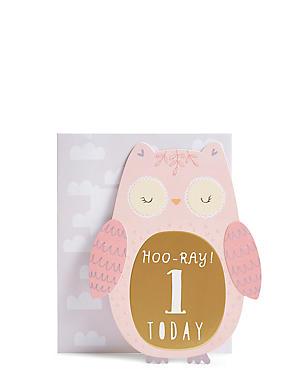Age 1 Owl Birthday Card
