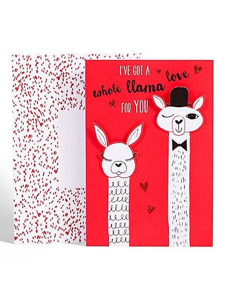 hidden message valentines day card llama message s day card m amp s 6707