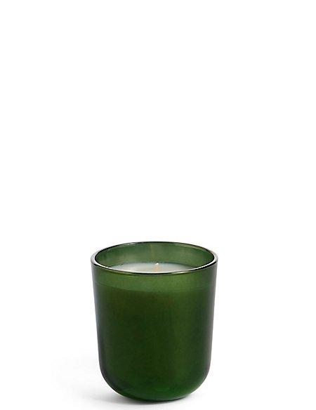 Mistletoe & Fir Single Candle