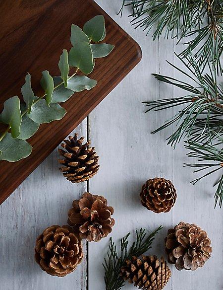 Mistletoe Mini Diffuser